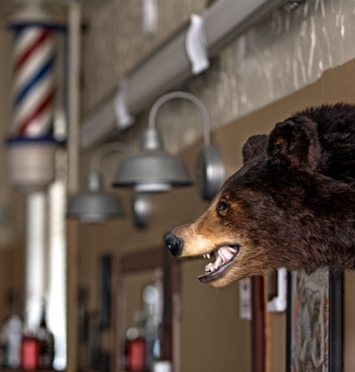 Canton Corner Barbershop Bear